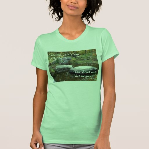 Corriente tranquila - camiseta #2 camisas