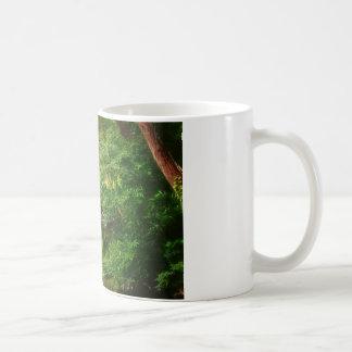 Corriente verde soñadora del bosque y del agua taza de café