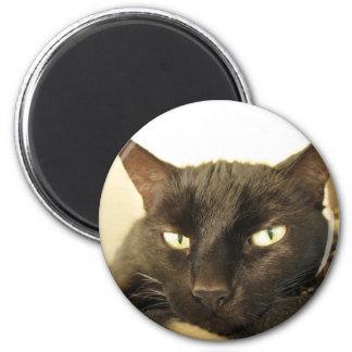 Corrin 2 Inch Round Magnet