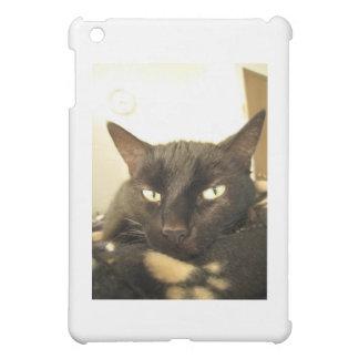 Corrin iPad Mini Case