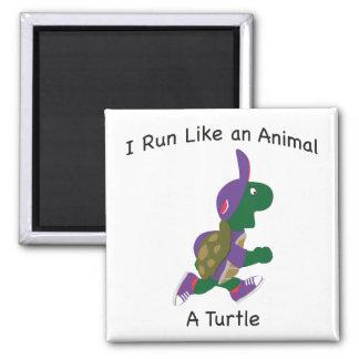 Corro como un animal - tortuga imán cuadrado