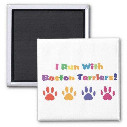 Corro con los terrieres de Boston Imán De Frigorifico