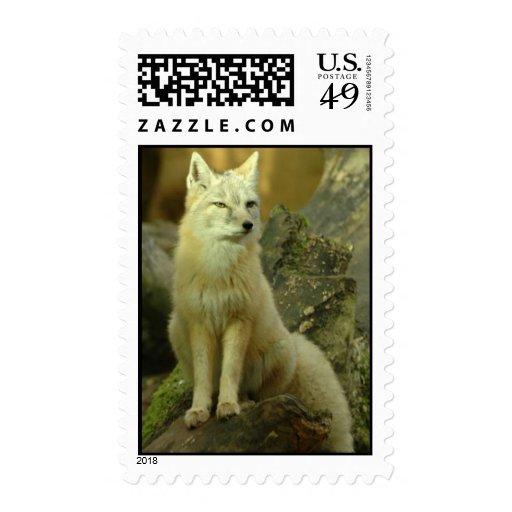 Corsac Fox Postage
