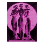 Corsés del vintage, rosa de tres tolerancias tarjetas postales