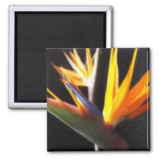 Corte las flores 1 de la ave del paraíso Painterly Imán Cuadrado
