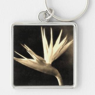 Corte las flores 3 de la ave del paraíso Antiqued Llavero Cuadrado Plateado