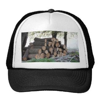 Corte los troncos de árbol llenados para arriba pa