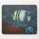 Cortez Angelfish Mouse Pads