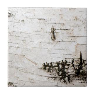 Corteza de abedul 2330 azulejo cuadrado pequeño