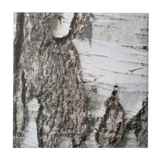 Corteza de abedul azulejo cuadrado pequeño