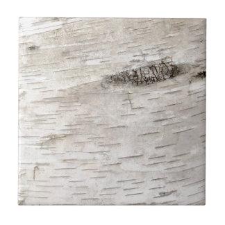 Corteza de abedul blanco azulejo cuadrado pequeño