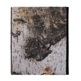 Corteza de abedul - foto de madera de la