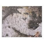 Corteza de abedul - foto de madera de la naturalez bloc de notas