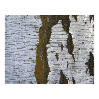 Corteza de árbol blanca Scrapbooking 11x8.5 de Plantillas De Membrete