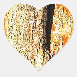 Corteza de árbol con tonos anaranjados pegatina en forma de corazón