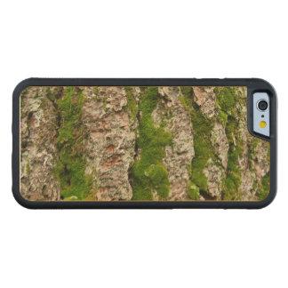 Corteza de árbol cubierta de musgo de pino funda de iPhone 6 bumper arce