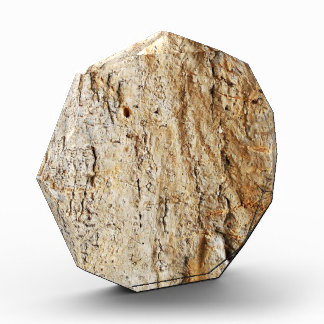 Corteza de árbol de madera