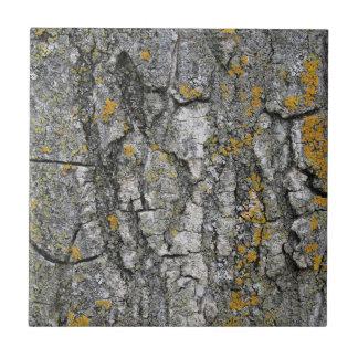 Corteza de árbol de madera del falso Grunge gris Azulejo Cuadrado Pequeño