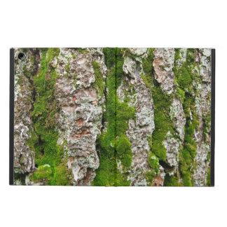 Corteza de árbol de pino con el musgo