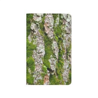 Corteza de árbol de pino con el musgo cuaderno grapado