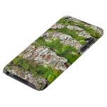 Corteza de árbol de pino con el musgo iPod touch cobertura