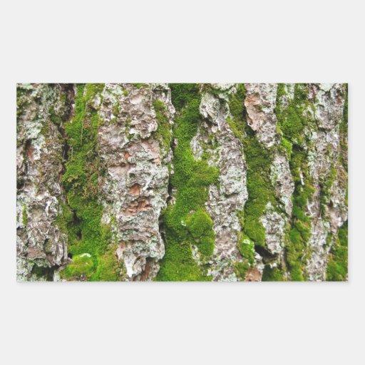 Corteza de árbol de pino con el musgo pegatina rectangular