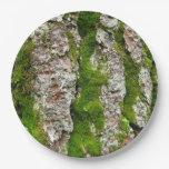 Corteza de árbol de pino con el musgo plato de papel 22,86 cm