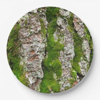 Corteza de árbol de pino con el musgo platos de papel