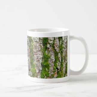 Corteza de árbol de pino con el musgo taza de café