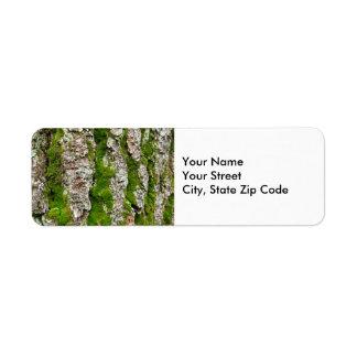 Corteza de árbol de pino con la etiqueta del remit etiquetas de remite
