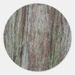Corteza de árbol etiquetas redondas