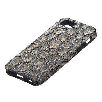 Corteza de árbol iPhone 5 protectores