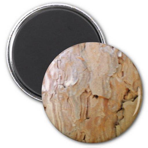 Corteza de árbol imán redondo 5 cm