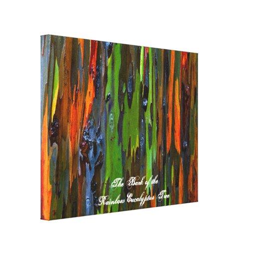 Corteza de la lona del árbol de eucalipto del arco lona estirada galerias