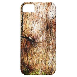 Corteza de roble vieja funda para iPhone SE/5/5s
