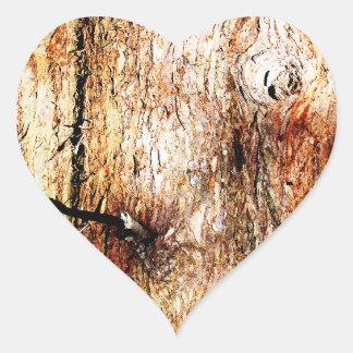 Corteza de roble vieja pegatina en forma de corazón