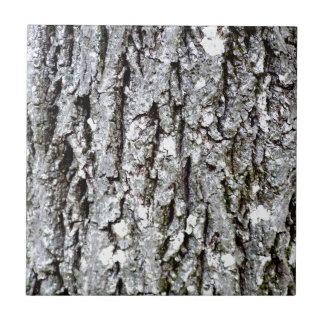 Corteza de un árbol de nuez dura azulejo cuadrado pequeño