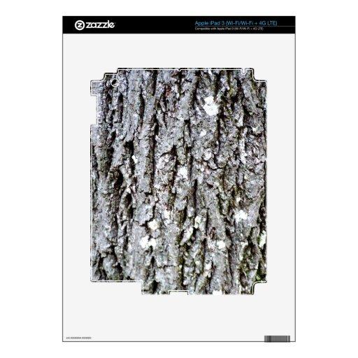 Corteza de un árbol de nuez dura iPad 3 skin
