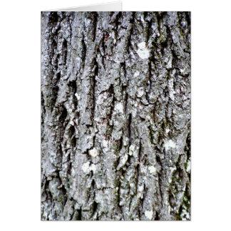 Corteza de un árbol de nuez dura tarjeta de felicitación