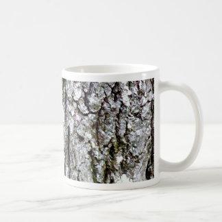 Corteza de un árbol de nuez dura tazas