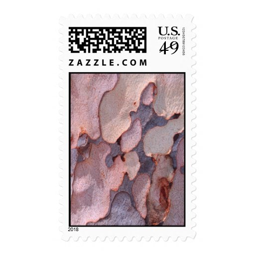 Corteza del eucalipto sello