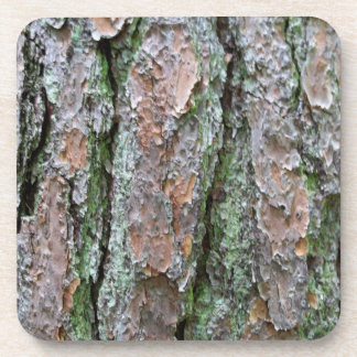 Corteza del pino posavasos