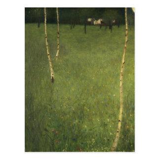 Cortijo con los árboles de abedul, 1900 tarjetas postales