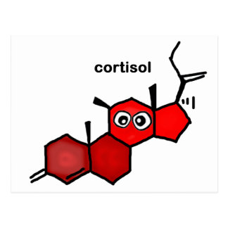 Cortisol Postcard