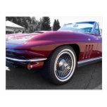 Corvette clásico de la pastinaca postales