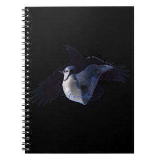 Corvidae Notebook