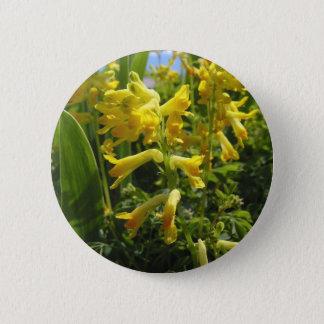 Corydalis, BC, Canada Button