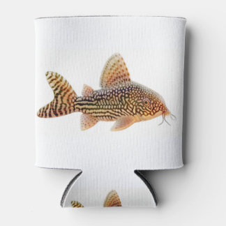Corydoras Sterbae Catfish Can Cooler
