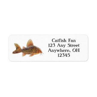 Corydoras Sterbae Catfish Label