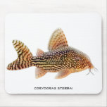 Corydoras Sterbai Catfish Mousepad